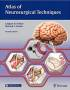 atlas_of_neurosurgical_techniques_brain.jpg