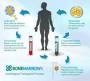 high_dose_chemotherapy_and_autologous_stem_cell_transplantation.jpg